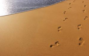 Footprints_crpd
